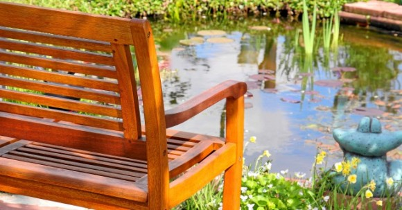 bench_wood_pond_park